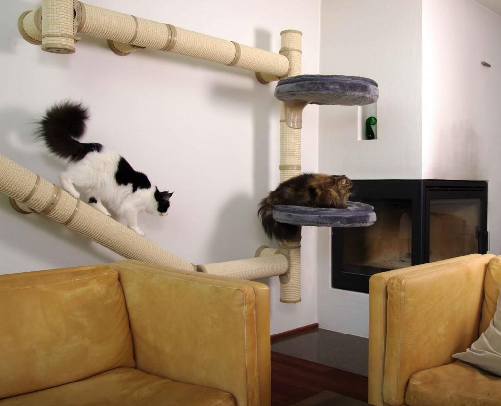 kattens no 1